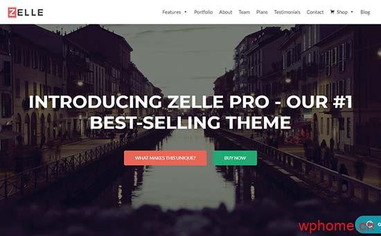 Zelle 一个单页的WordPress商业网站主题